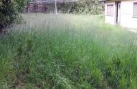 Cutting-Backyard-with-Mower