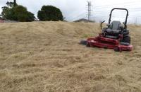 New-Mower-Tall-Grass-Slashed